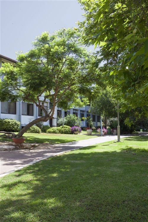 מדשאות המלון