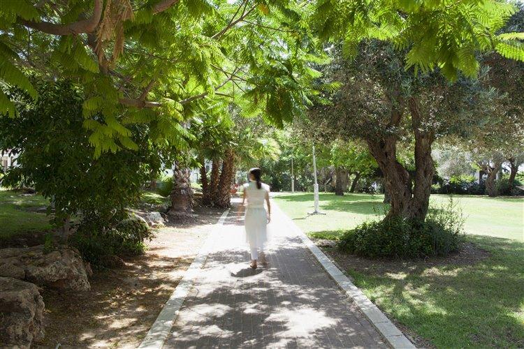 מדשאות המקיפות את המלון