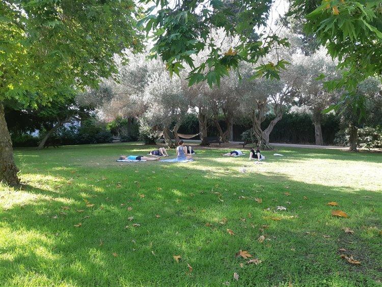 פעילות יוגה על הדשא