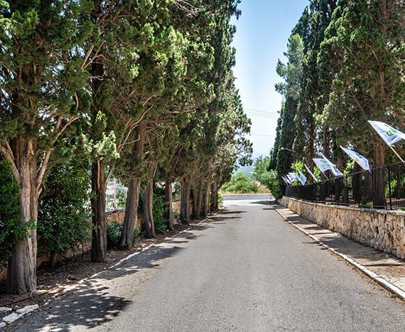 מלון בזכרון יעקב – חופשה ישראלית בסביבה הקרובה